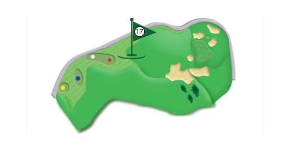 Details of the hole 17